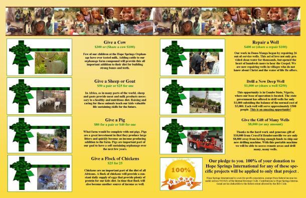 12.2012 Christmas Newsletter